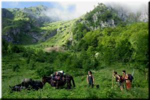 trekking avec portage en ariège
